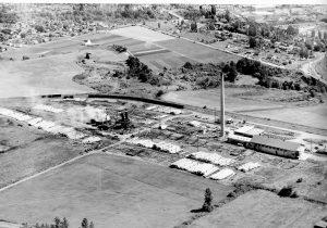 The Oeser Company - 1954